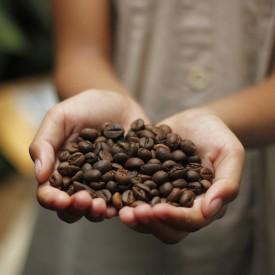 Káva Shanti blend